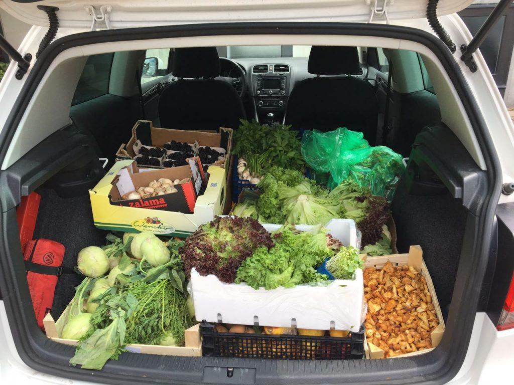 Kofferraum voller Lebensmittel